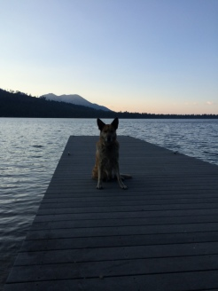 Here is Lolo sitting on our family dock at Fallen Leaf Lake and she is looking east.